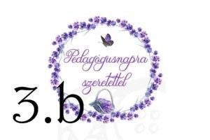 levendula-pedagogus-3b